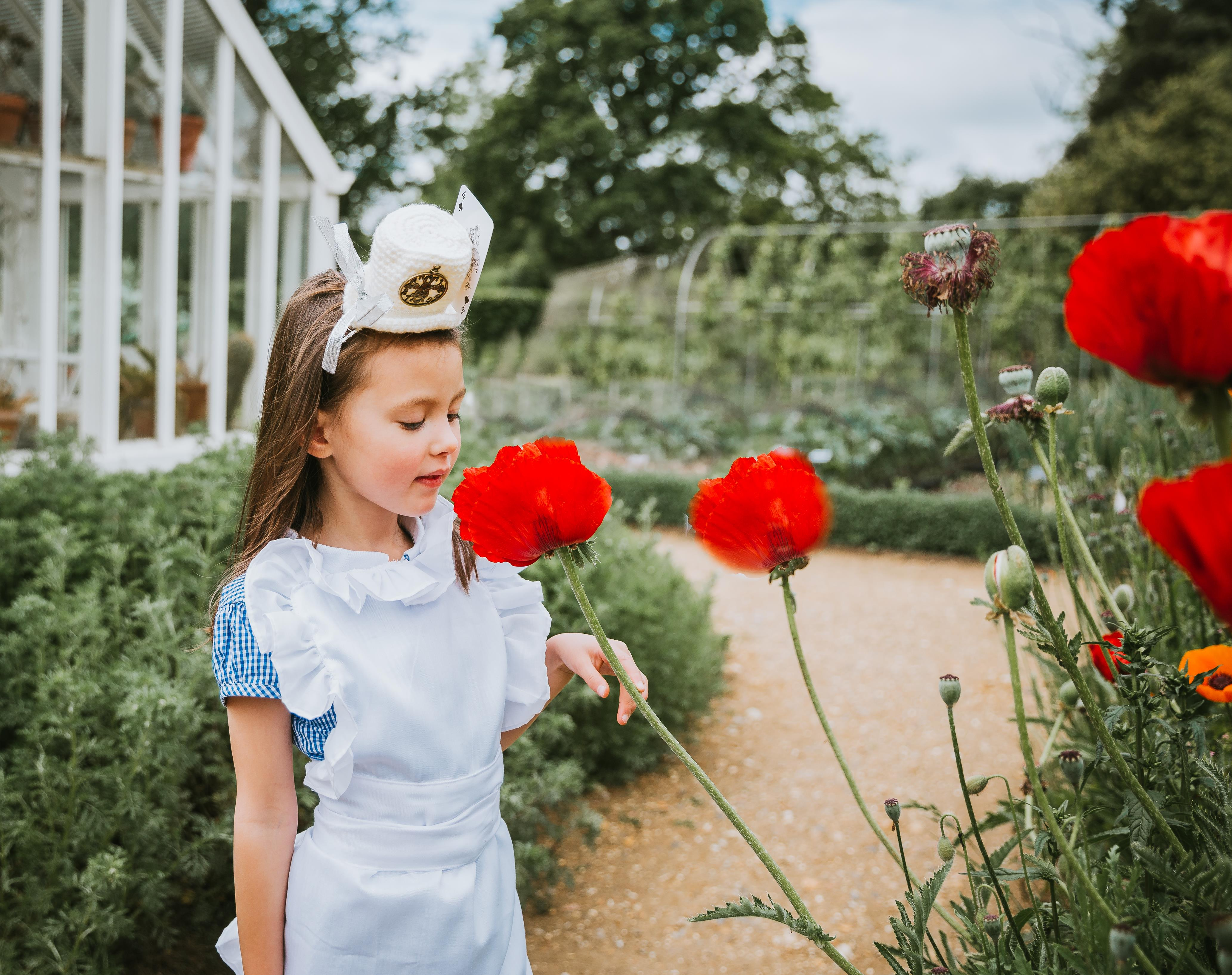 white mad hatter hat with red poppies